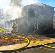 One woman was injured and two dogs died in a fire at a duplex in the Mariner neighborhood south of Everett Friday afternoon, June 30, 2017.